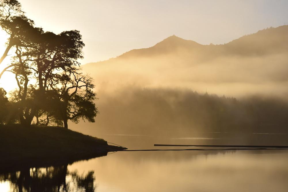 Dawn at Bon Tempe