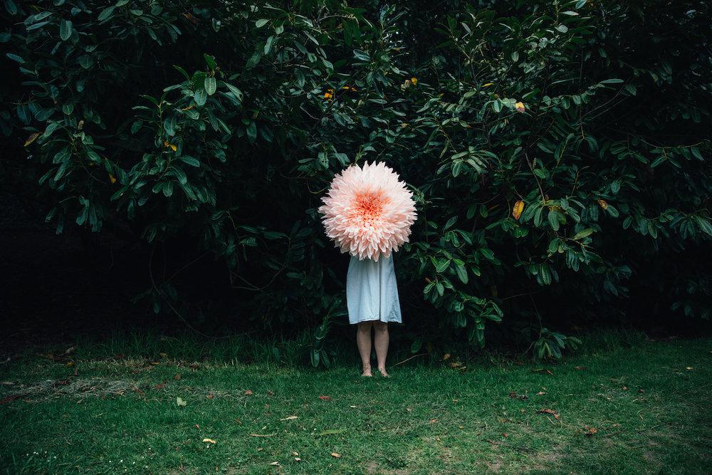 Tiffany Turner, Tree Dahlia